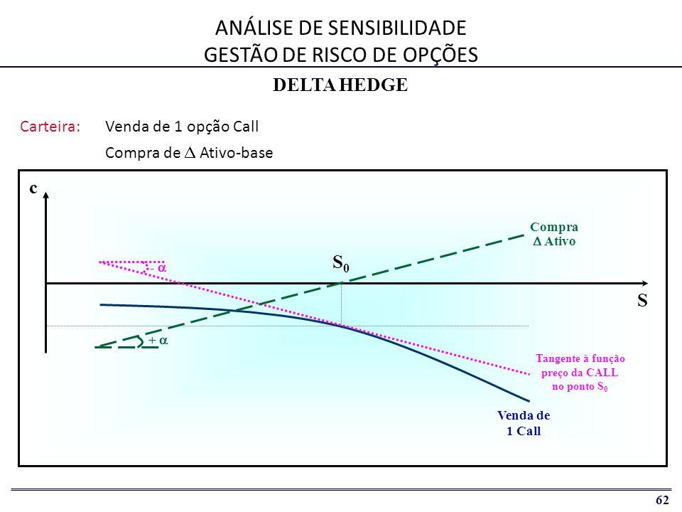 ANÁLISE DE SENSIBILIDADE GESTÃO DE RISCO DE OPÇÕES