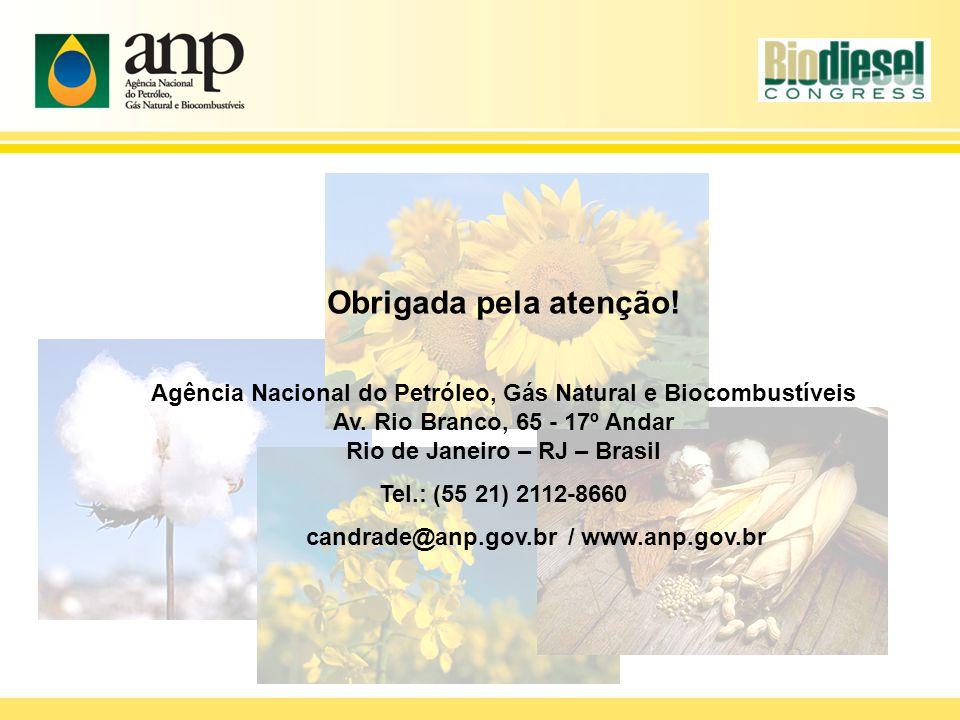 Obrigada pela atenção! Agência Nacional do Petróleo, Gás Natural e Biocombustíveis Av. Rio Branco, 65 - 17º Andar Rio de Janeiro – RJ – Brasil