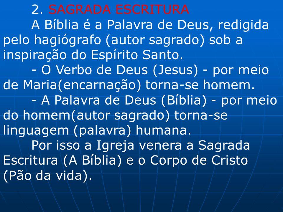 2. SAGRADA ESCRITURA A Bíblia é a Palavra de Deus, redigida pelo hagiógrafo (autor sagrado) sob a inspiração do Espírito Santo.