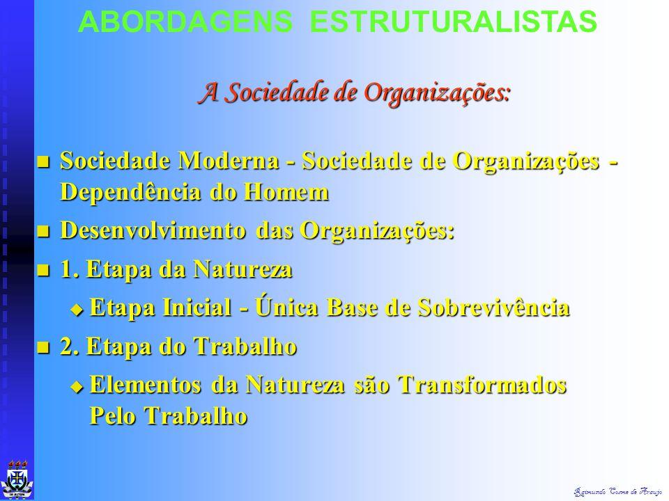 A Sociedade de Organizações: