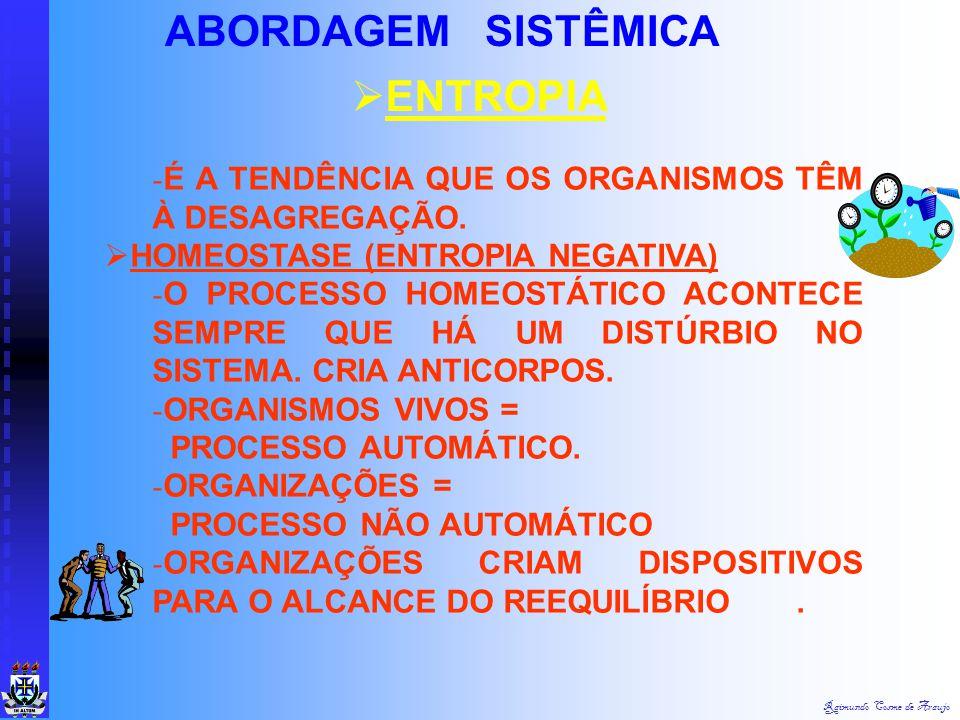 ABORDAGEM SISTÊMICA ENTROPIA