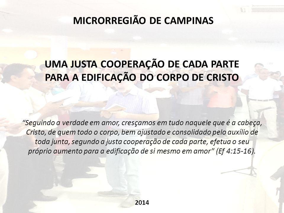MICRORREGIÃO DE CAMPINAS