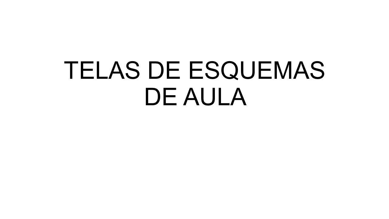 TELAS DE ESQUEMAS DE AULA