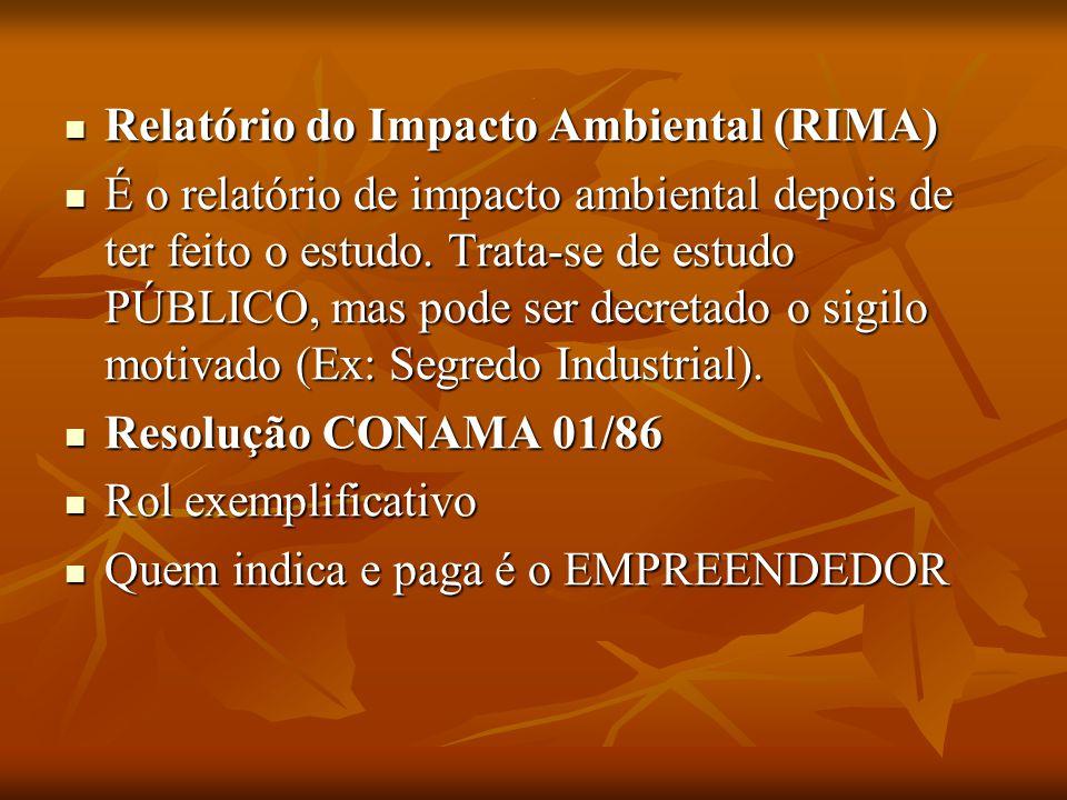 Relatório do Impacto Ambiental (RIMA)