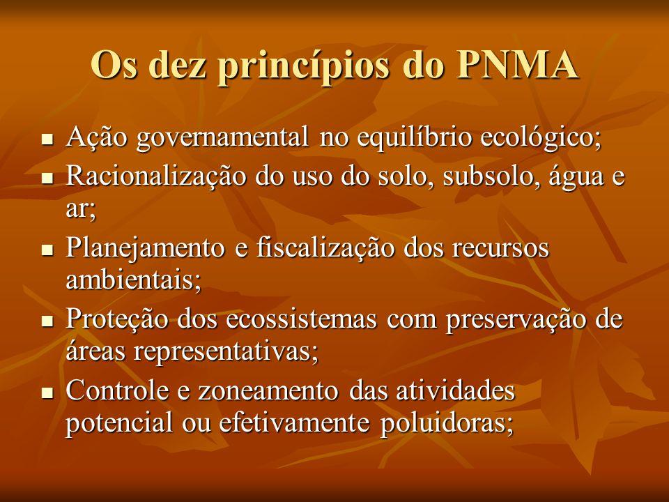 Os dez princípios do PNMA