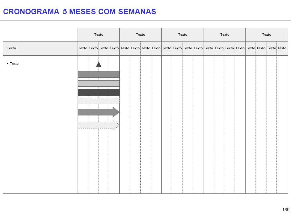 CRONOGRAMA 6 MESES COM SEMANAS
