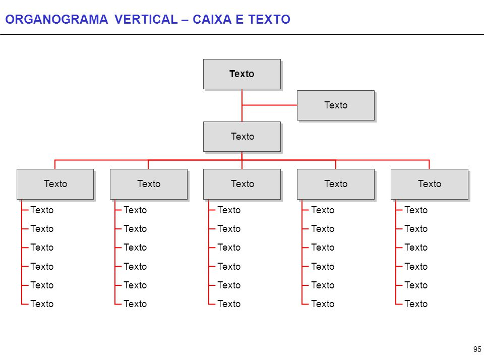 ORGANOGRAMA COM SETAS Texto Texto Texto Texto Texto Texto Texto