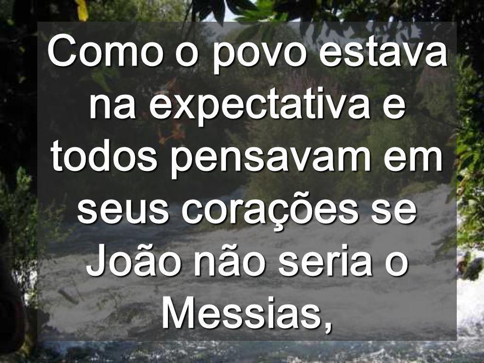 Como o povo estava na expectativa e todos pensavam em seus corações se João não seria o Messias,