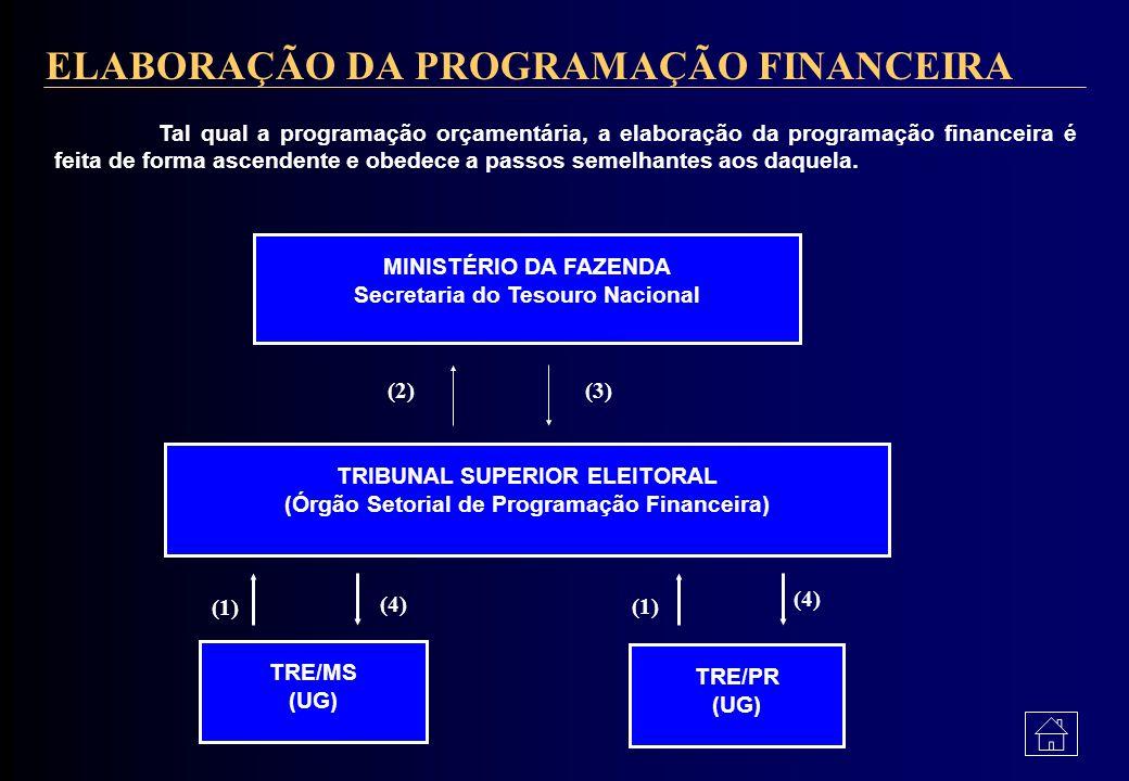 ELABORAÇÃO DA PROGRAMAÇÃO FINANCEIRA