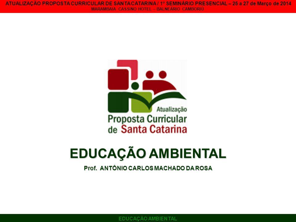 Prof. ANTÔNIO CARLOS MACHADO DA ROSA