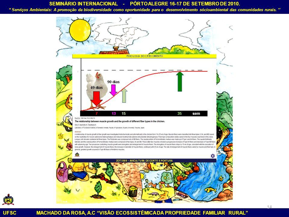 SEMINÁRIO INTERNACIONAL - PÔRTO ALEGRE 16-17 DE SETEMBRO DE 2010
