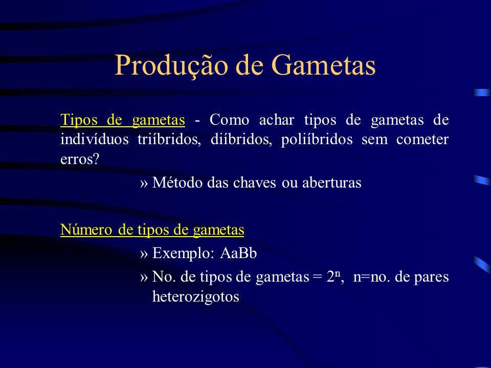 Produção de Gametas Tipos de gametas - Como achar tipos de gametas de indivíduos triíbridos, diíbridos, poliíbridos sem cometer erros