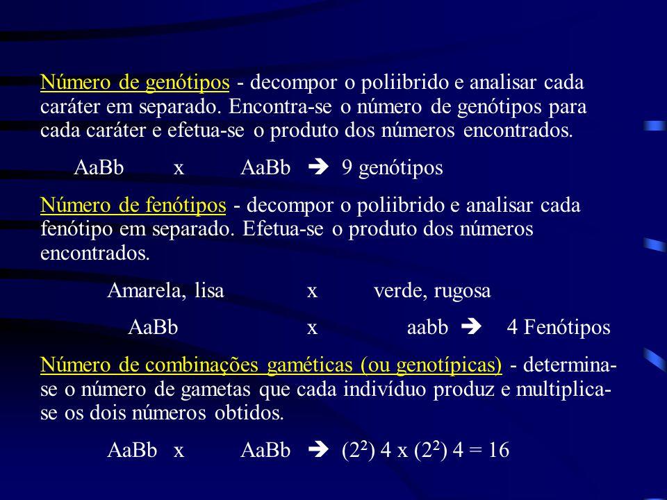 Número de genótipos - decompor o poliibrido e analisar cada caráter em separado. Encontra-se o número de genótipos para cada caráter e efetua-se o produto dos números encontrados.
