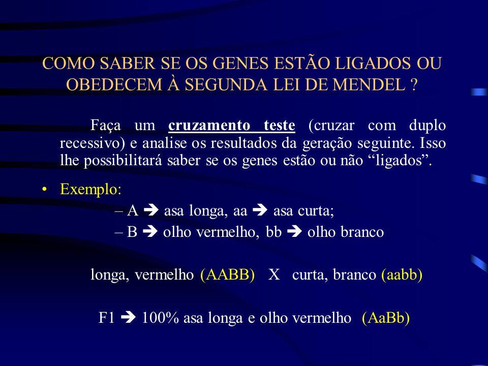COMO SABER SE OS GENES ESTÃO LIGADOS OU OBEDECEM À SEGUNDA LEI DE MENDEL