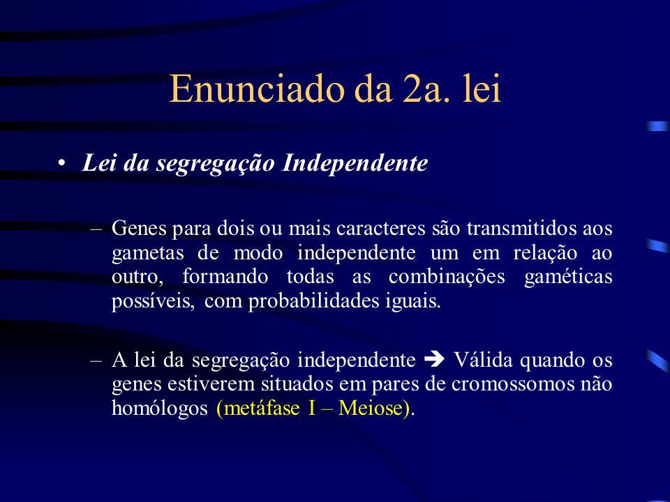 Enunciado da 2a. lei Lei da segregação Independente