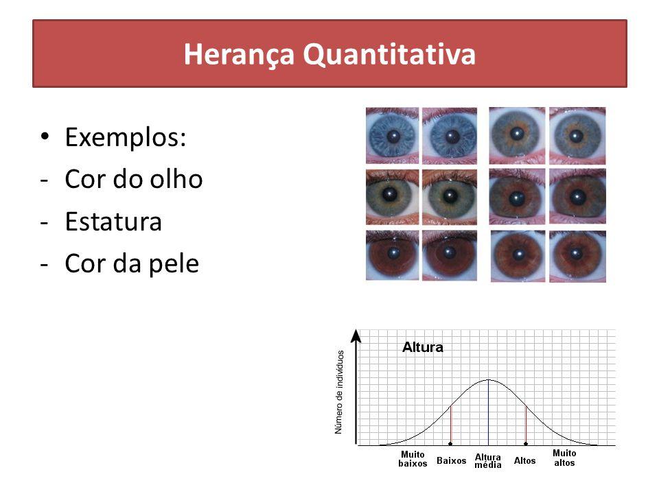 Herança Quantitativa Exemplos: Cor do olho Estatura Cor da pele
