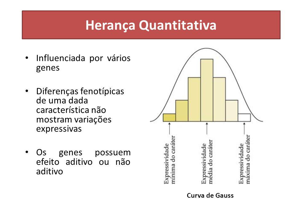 Herança Quantitativa Influenciada por vários genes