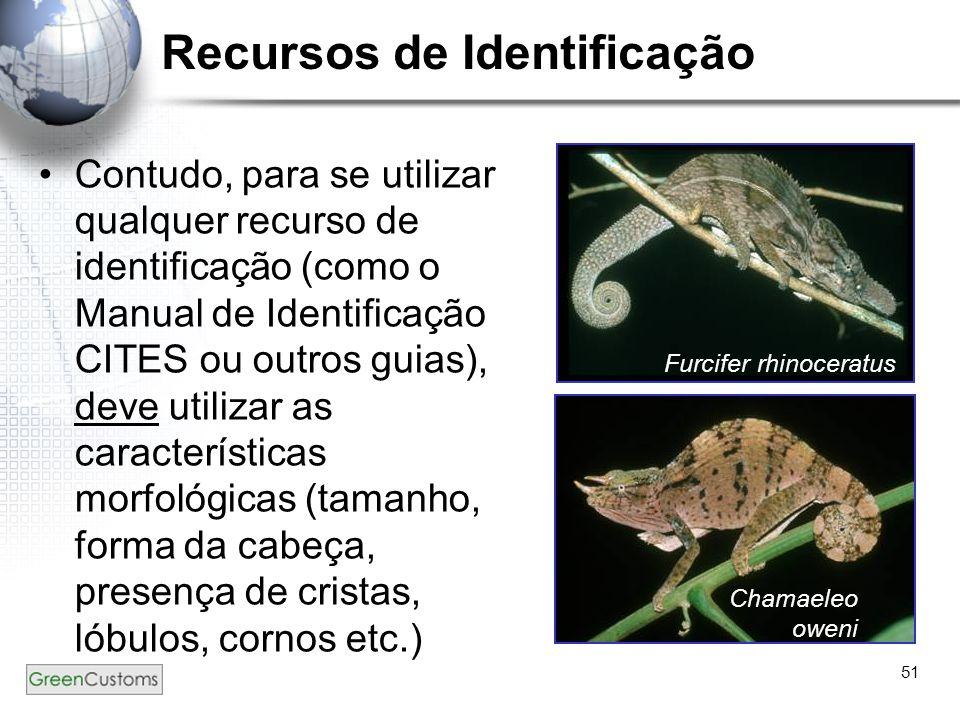 Recursos de Identificação