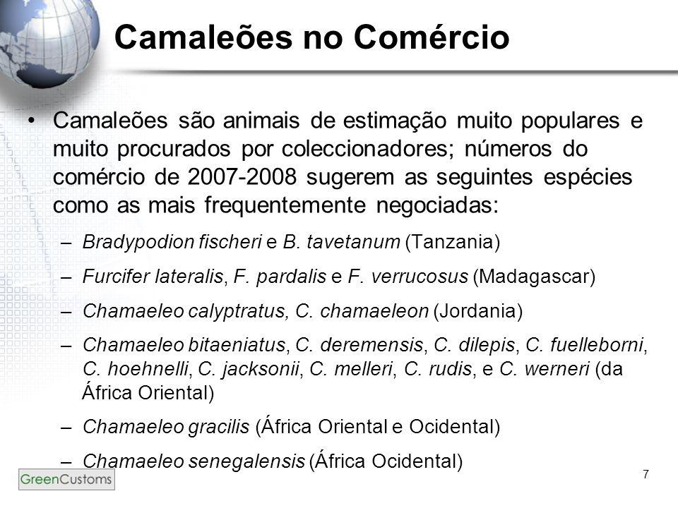 Camaleões no Comércio