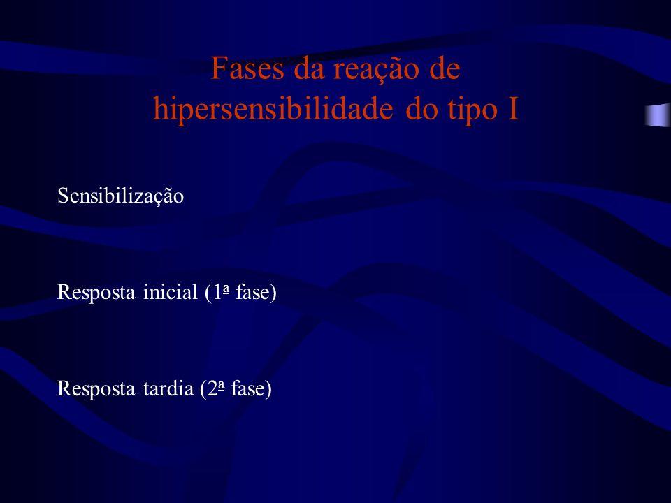 Fases da reação de hipersensibilidade do tipo I