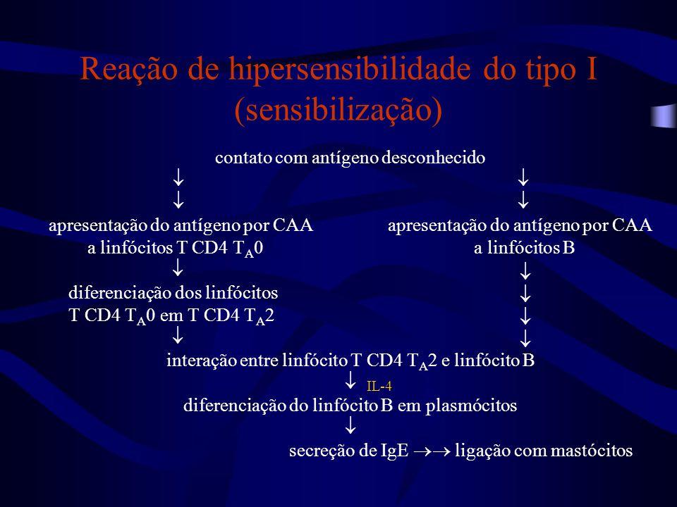Reação de hipersensibilidade do tipo I (sensibilização)