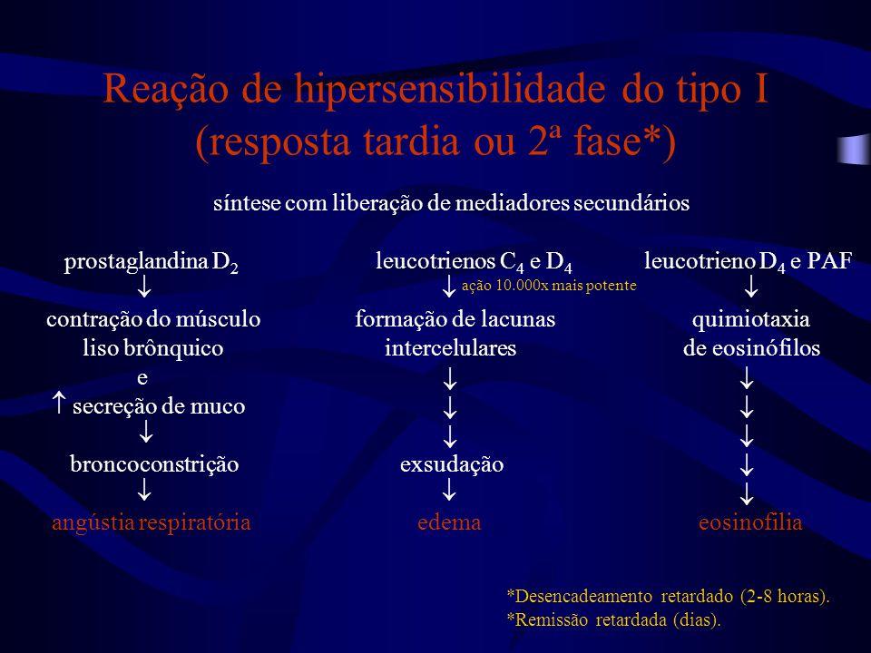 Reação de hipersensibilidade do tipo I (resposta tardia ou 2ª fase*)