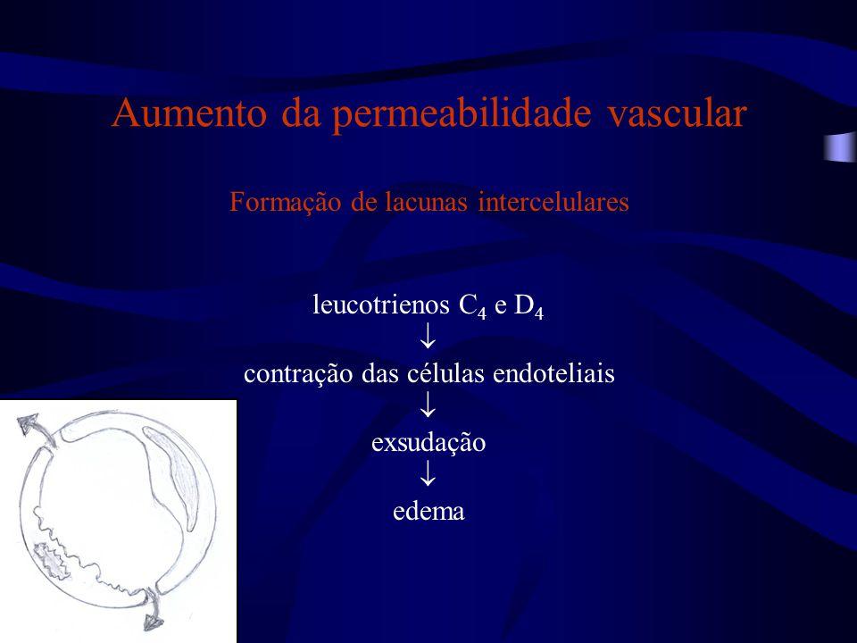 Aumento da permeabilidade vascular
