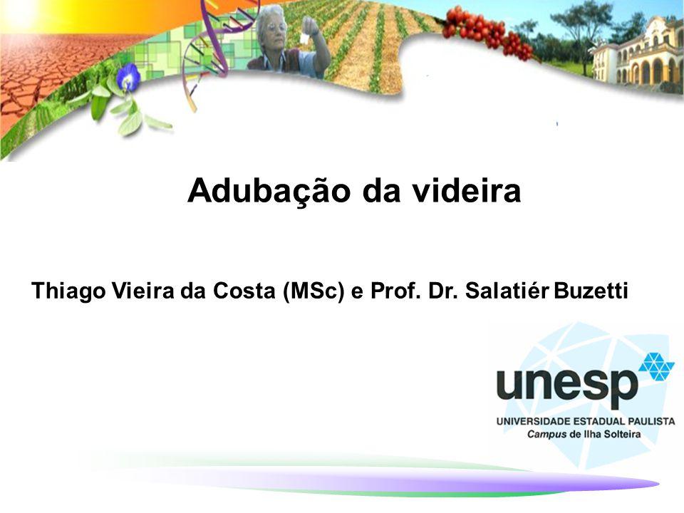 Adubação da videira Thiago Vieira da Costa (MSc) e Prof. Dr. Salatiér Buzetti 1