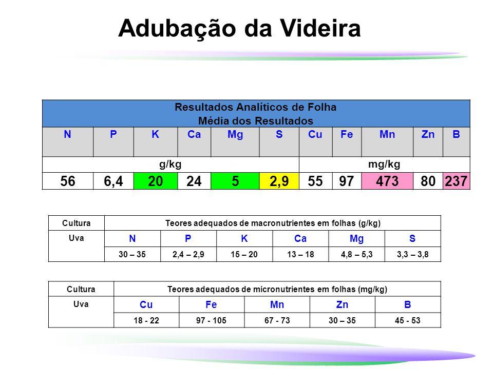 Adubação da Videira Resultados Analíticos de Folha. Média dos Resultados. N. P. K. Ca. Mg. S.
