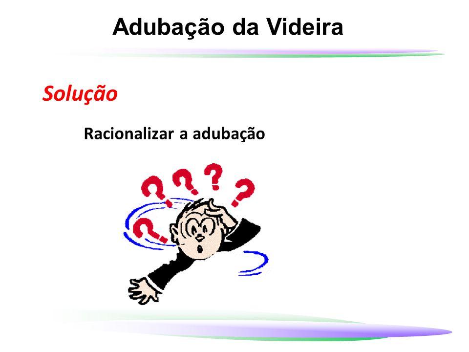 Adubação da Videira Solução Racionalizar a adubação 13