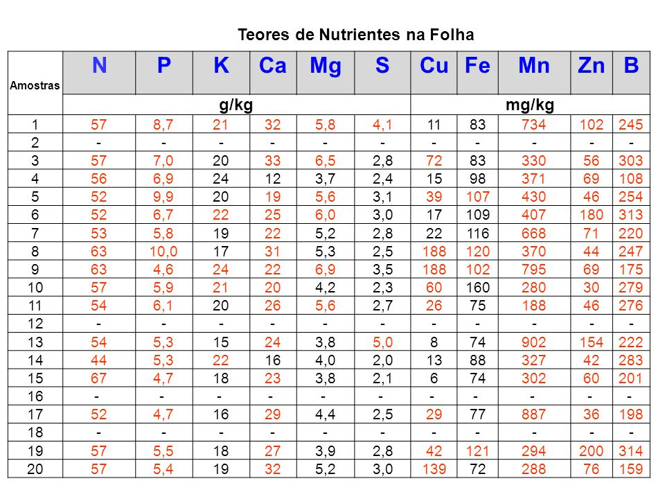 Teores de Nutrientes na Folha