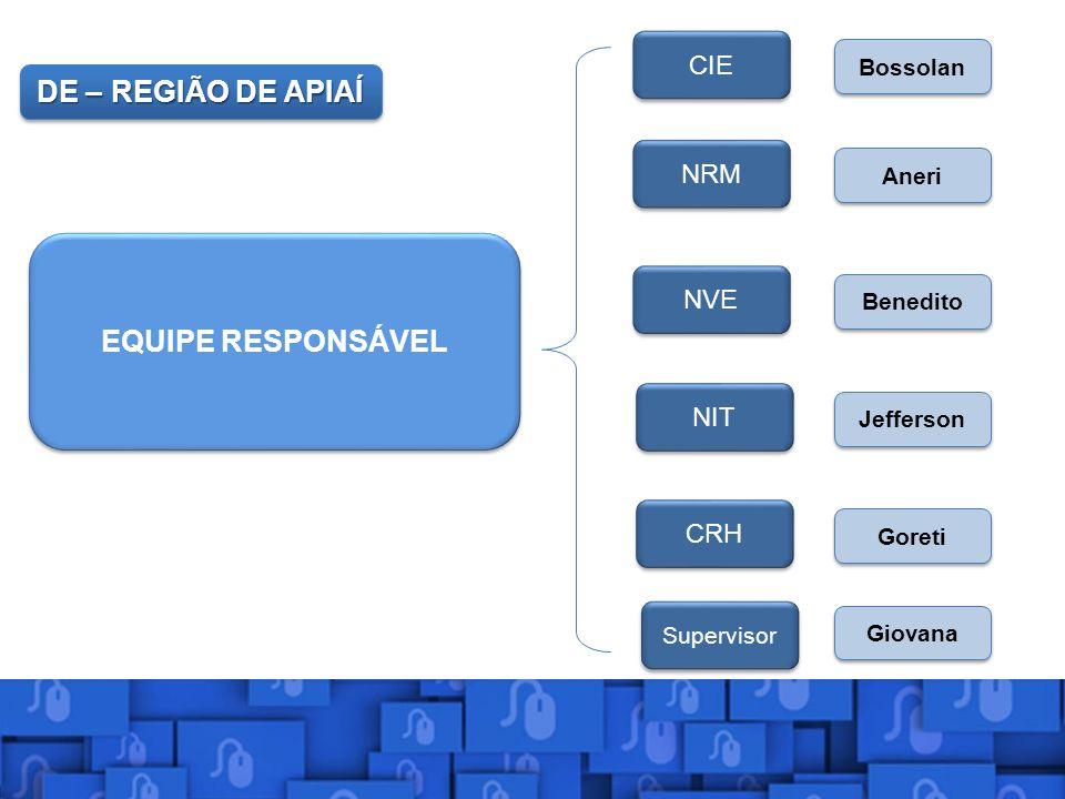 DE – REGIÃO DE APIAÍ EQUIPE RESPONSÁVEL