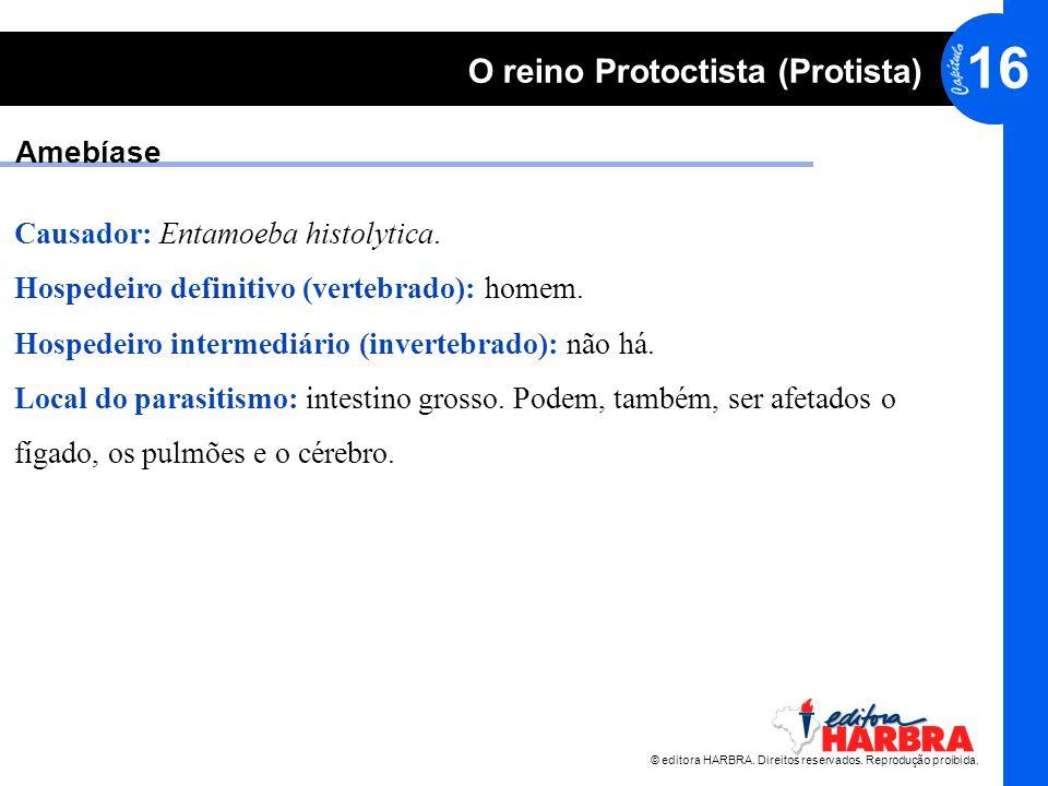 Amebíase Causador: Entamoeba histolytica. Hospedeiro definitivo (vertebrado): homem. Hospedeiro intermediário (invertebrado): não há.