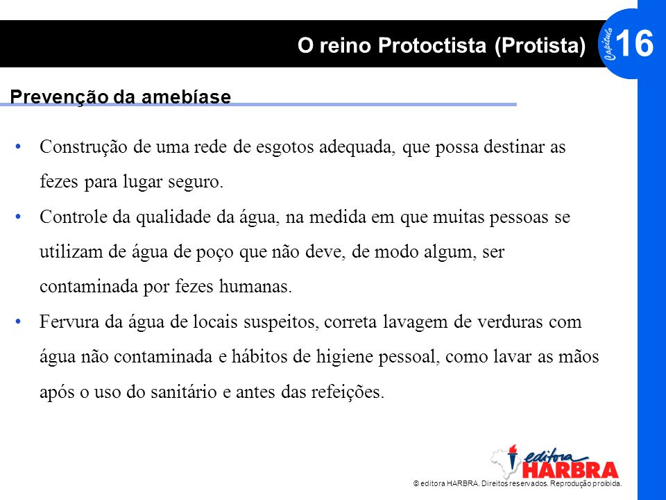 Prevenção da amebíase Construção de uma rede de esgotos adequada, que possa destinar as fezes para lugar seguro.