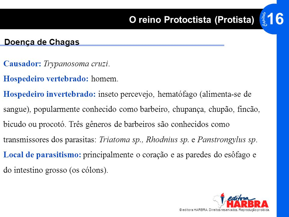 Doença de Chagas Causador: Trypanosoma cruzi. Hospedeiro vertebrado: homem. Hospedeiro invertebrado: inseto percevejo, hematófago (alimenta-se de.