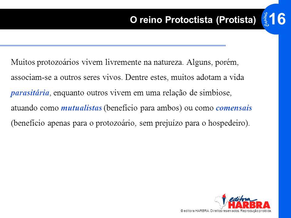 Muitos protozoários vivem livremente na natureza