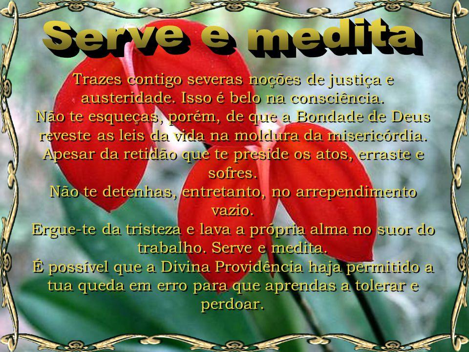 Serve e medita Trazes contigo severas noções de justiça e austeridade. Isso é belo na consciência.