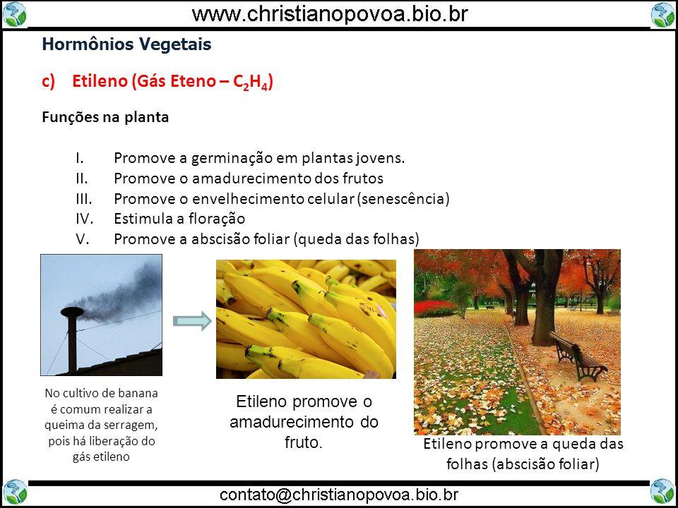 c) Etileno (Gás Eteno – C2H4)