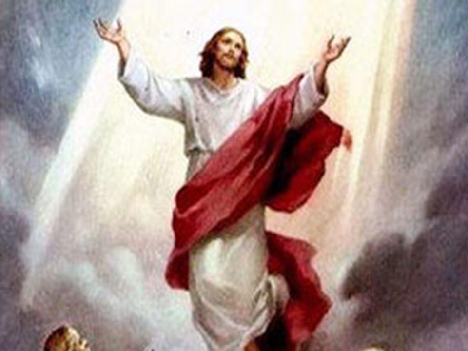 O testemunho da obra realizada por Jesus, desde o batismo de João (1,1-11) até a ascensão (16,19), leva a uma resposta na fé: Quem crer e for batizado será salvo (v.16).