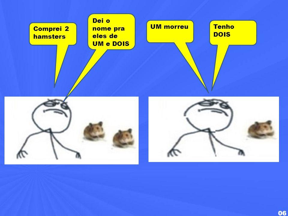 Dei o nome pra eles de UM e DOIS UM morreu Tenho DOIS Comprei 2 hamsters