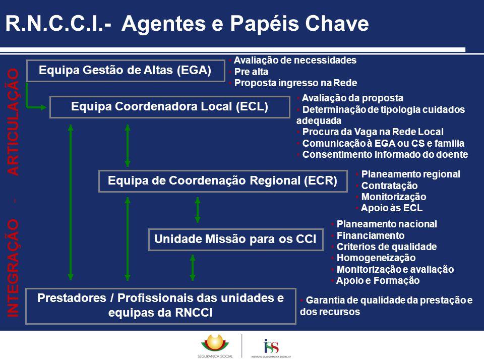 R.N.C.C.I.- Agentes e Papéis Chave