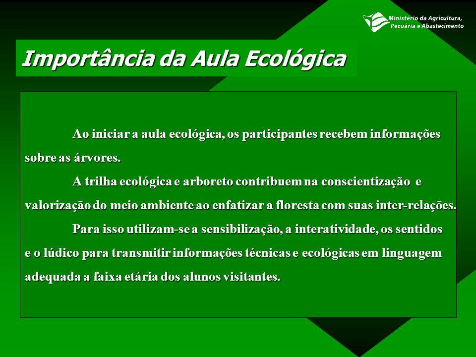 Importância da Aula Ecológica