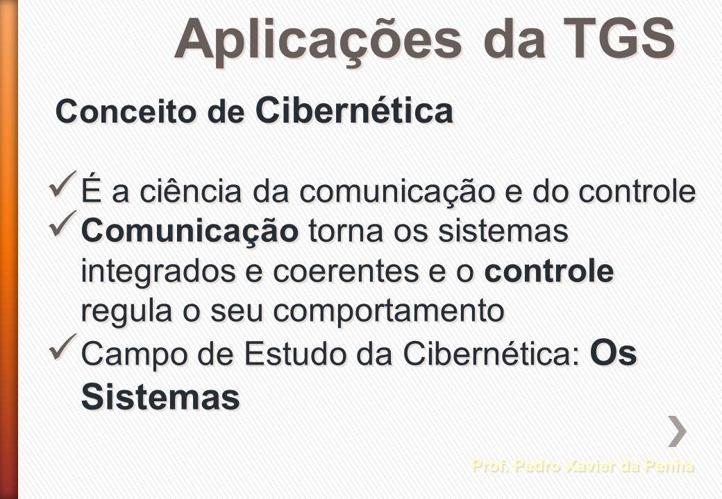 Aplicações da TGS Prof. Pedro Xavier da Penha Conceito de Cibernética