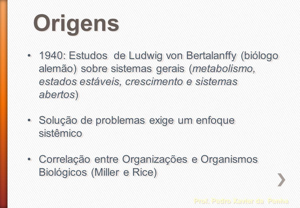 Origens Prof. Pedro Xavier da Penha