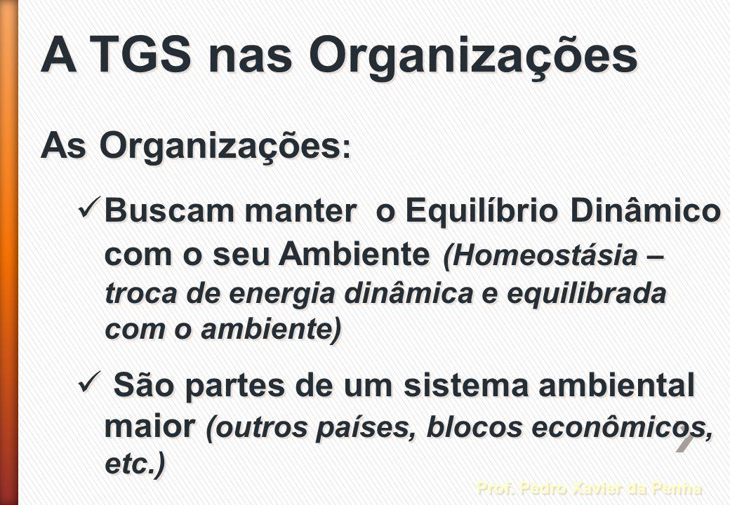 A TGS nas Organizações As Organizações: Prof. Pedro Xavier da Penha