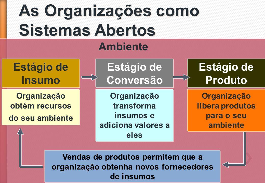 As Organizações como Sistemas Abertos