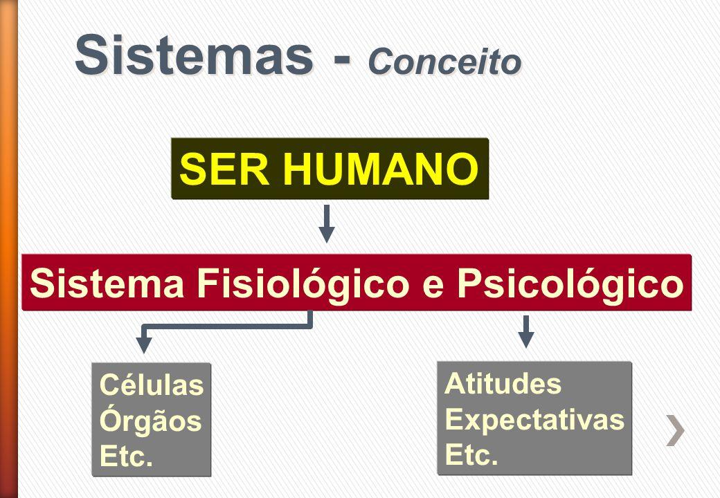 Sistemas - Conceito SER HUMANO Sistema Fisiológico e Psicológico