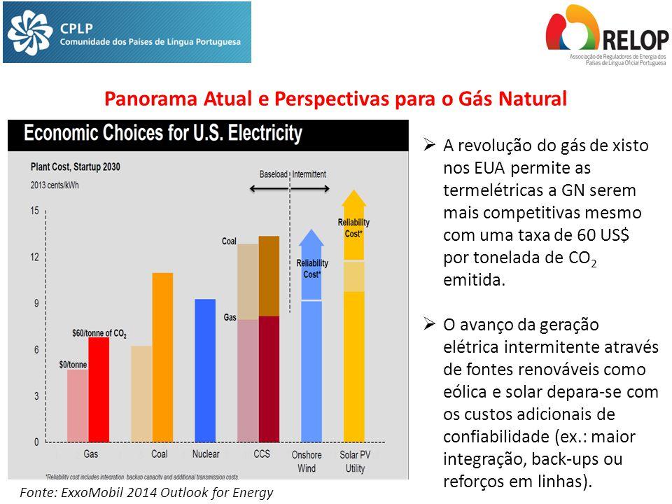 Panorama Atual e Perspectivas para o Gás Natural