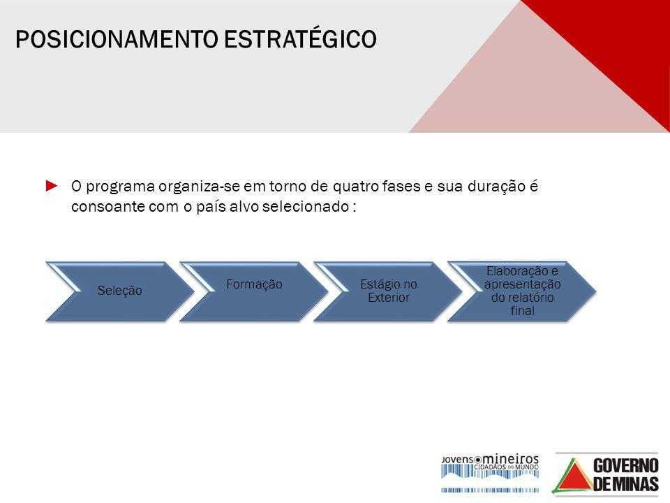 Elaboração e apresentação do relatório final