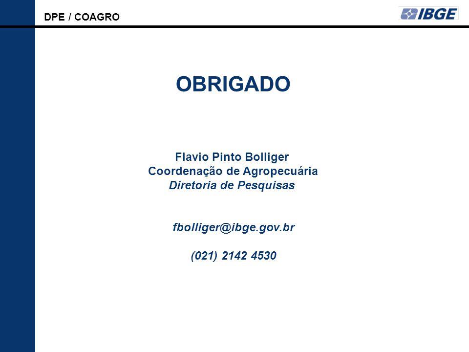 OBRIGADO Flavio Pinto Bolliger Coordenação de Agropecuária Diretoria de Pesquisas. fbolliger@ibge.gov.br.